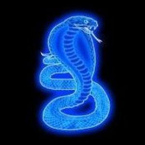 Tapety pozadia na mobil zadarmo fantasy kobra zoxee kobra voltagebd Images