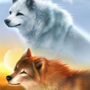 Tapety pozadia na mobil zadarmo fantasy vlk zoxee vlk voltagebd Choice Image