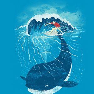 Surfovanie na veľrybe 6762f3e2192